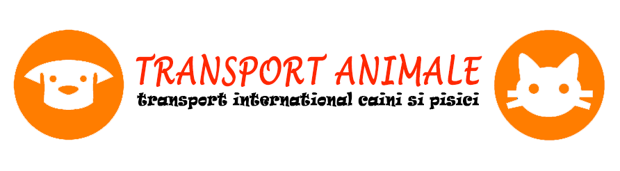 Transport international animale de companie logo